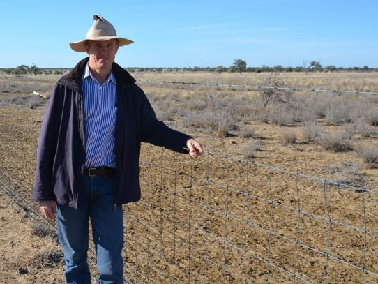 Counsell fence stops wild dogs and sheep measles