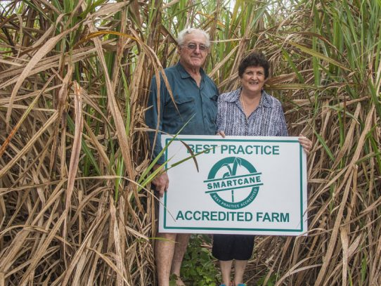 Cairns region takes Smartcane BMP to new high