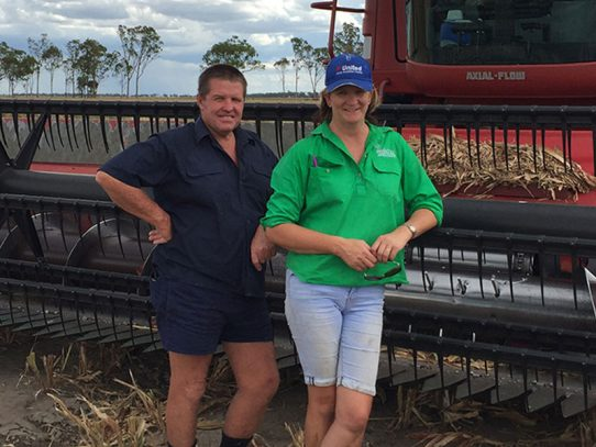 Tough sorghum means business as usual for Dalby Bio-Refinery growers