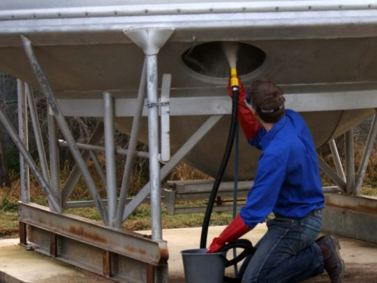 Post-harvest jobs to protect stored grain from pests
