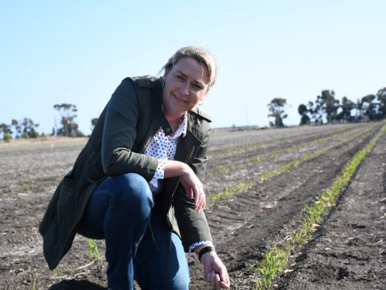 Growing farm profitability through GRDC Updates