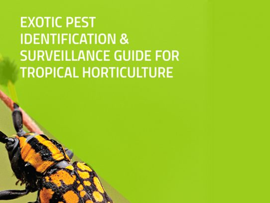New surveillance guide for pests and diseases of tropical crops
